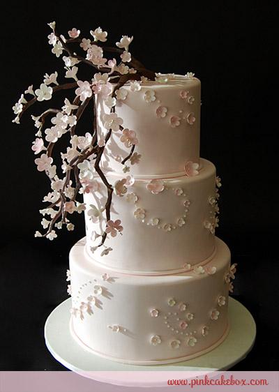 cake1587
