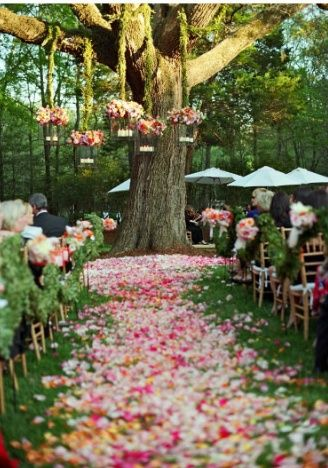 outdoor-garden-tree-ceremony